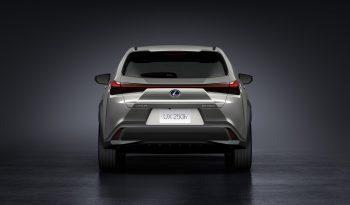 Lexus UX250h lleno